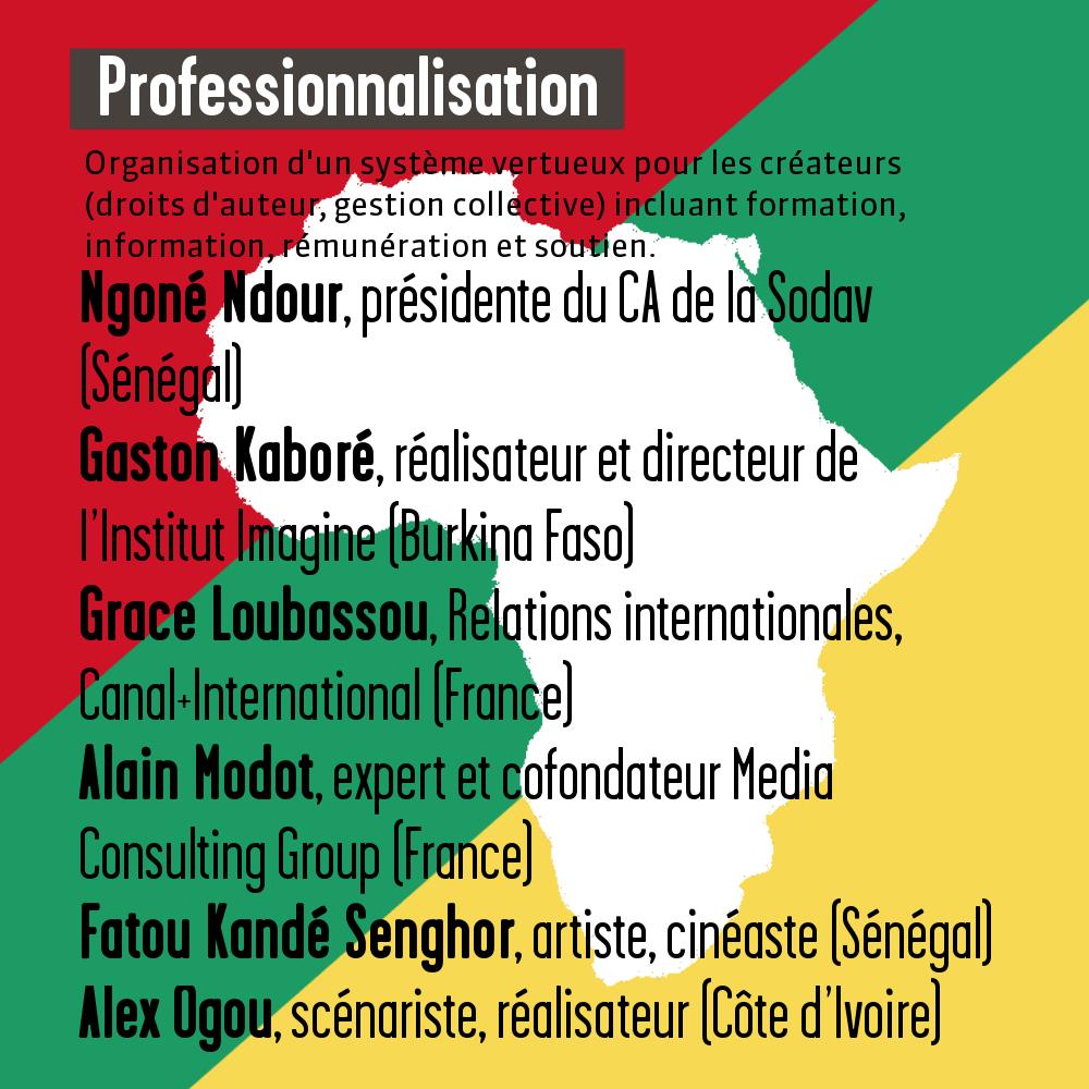 visuel professionnalisation